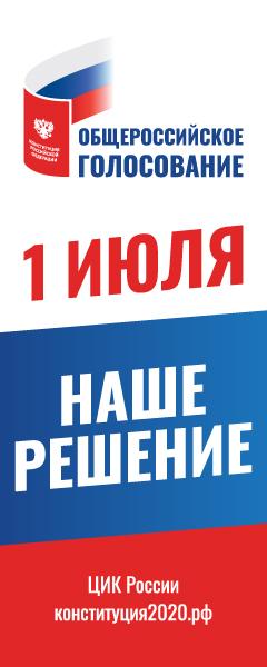 Голосование конституция